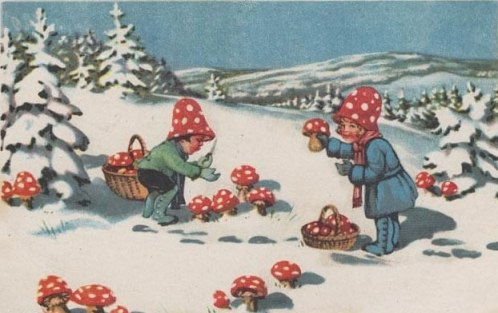 fly_agaric_childrens_holiday_card_lg
